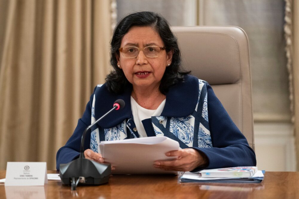Gina Tambini, representante OMS en Colombia