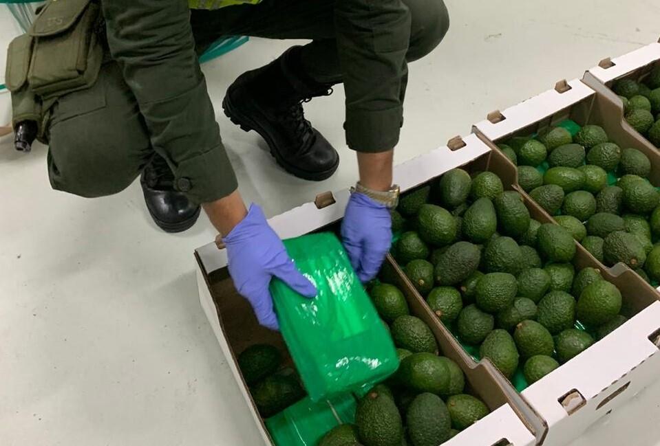 Cocaína camuflada en cargamento de aguacates (1).jpeg