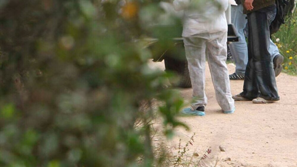hallan cuerpo decapitado en via tulua-riofrio valle del cauca foto referencia archivo colprensa 2.jpg