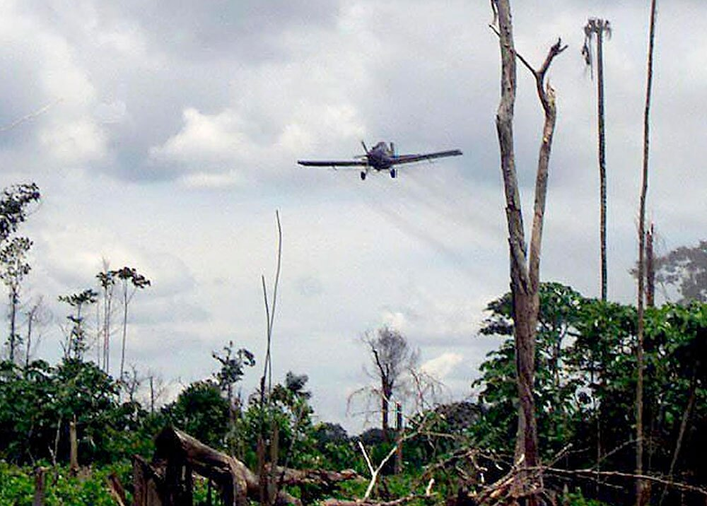322556_Blu Radio // Glifosato - Aspersión aérea // Foto: AFP