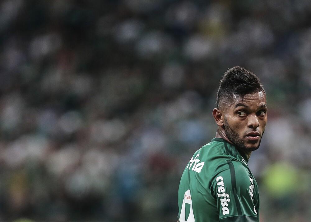 302352_Miguel Ángel Borja, delantero colombiano del Palmeiras - Foto: AFP