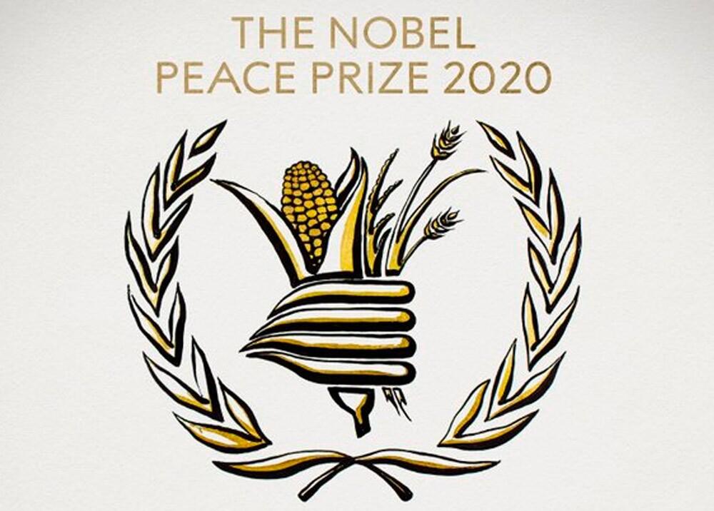 Nobel de paz 2020 al Programa Mundial de Alimentos