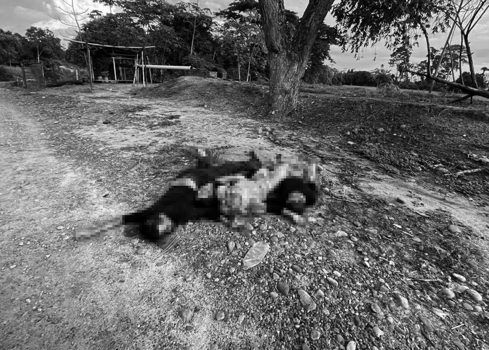 372598_Masacre en Cúcuta. Foto: Cortesía