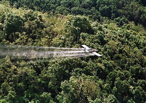 49419_Blu Radio // Fumigaciones con glifosato. // Foto: AFP