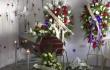 hincha america asesinado en popayan cauca foto nota octubre 19 2020.png
