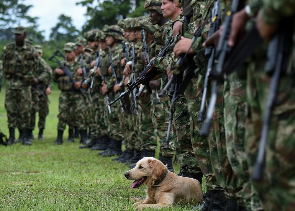 346341_BLU Radio // Soldados - imagen de referencia // Foto: AFP
