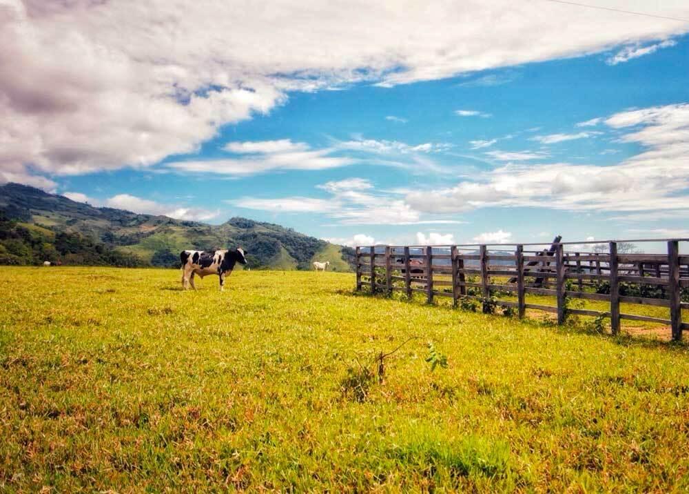 335189_BLU RAdio // Propiedad rural // Foto: cortesía Agencia Nacional de Tierras