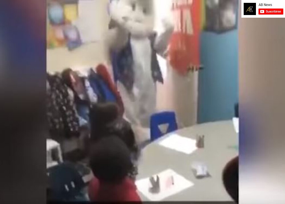 8671_La Kalle - Susto de una niña por un conejo de pascua - Foto: YouTube