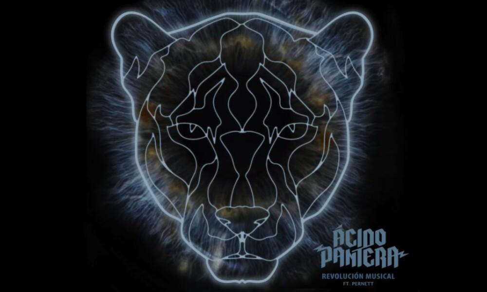 Acido-Pantera-Nueva-Musica-Pernett.jpg