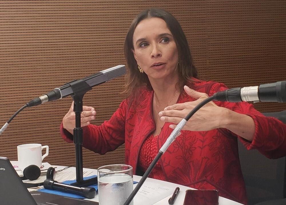 348424_María Consuelo Araújo, gerente de TransMilenio // Foto: BLU Radio