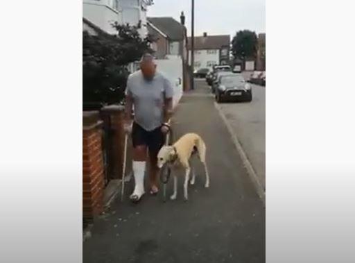 Hombre creyó que su perro estaba cojo, pero descubrió que solo lo imitaba.JPG