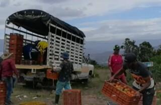 Platafroma campesinos- 9 julio.jpg