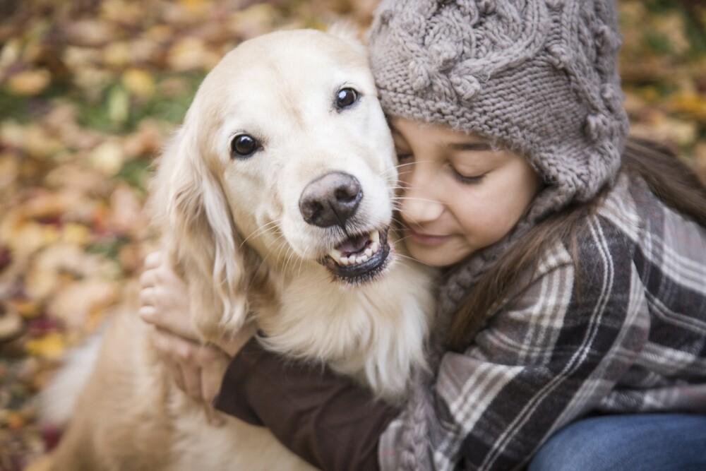 Descubre 10 curiosidades que desconocías de tu perro.