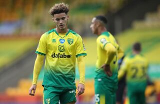 Norwich City, descendió en la Premier