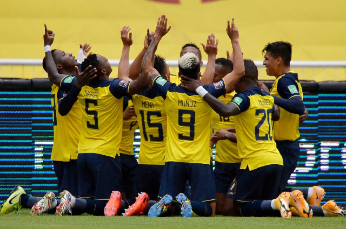 Oficial: Convocatoria de la Selección de Ecuador para jugar contra Brasil y  Perú