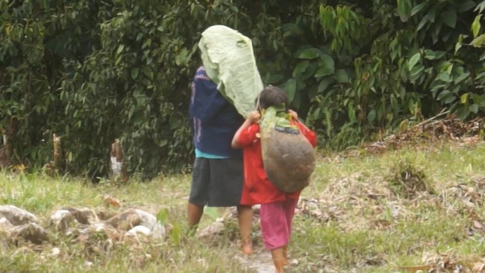 indigenas comunidad-