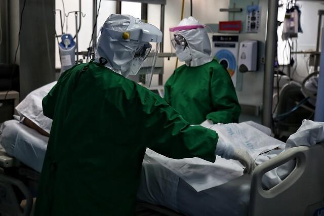 coronavirus 29 de nov.jpg