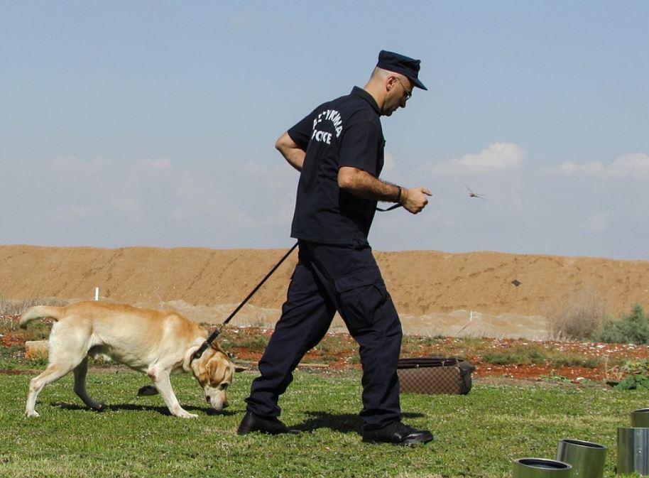 perro policia rescata ahorros en España