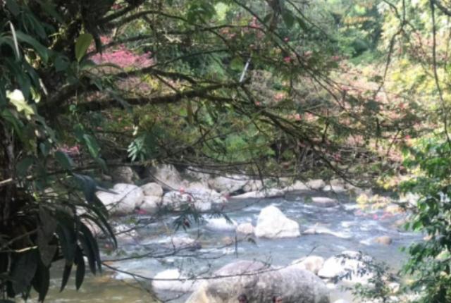 muere joven ahogado en río de San Rafael.