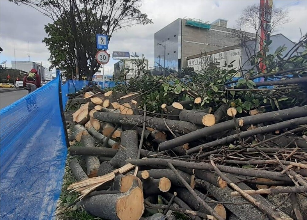 Tala de árboles en la Avenida 68 en Bogotá Foto Suministrada.jpg