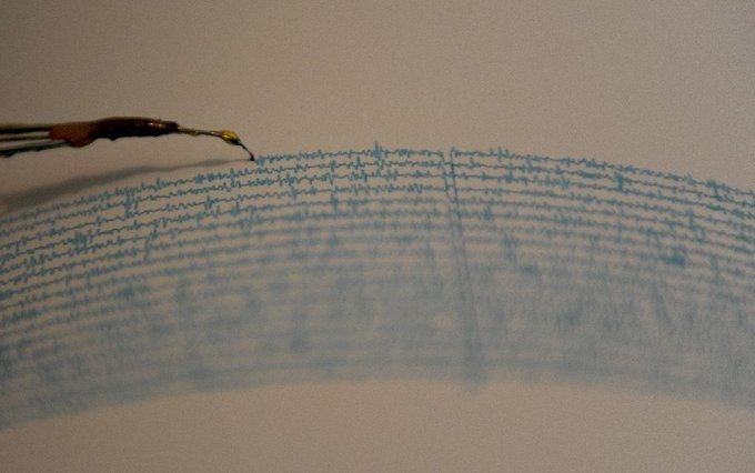 Terremoto, simso