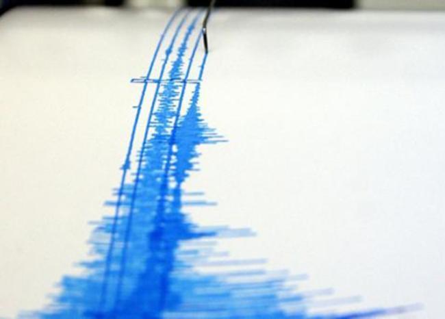 Foto referencia lectura de un sismógrafo